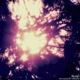 Яшар— Холодный mixtape