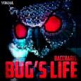 Baccharis — Bug's life